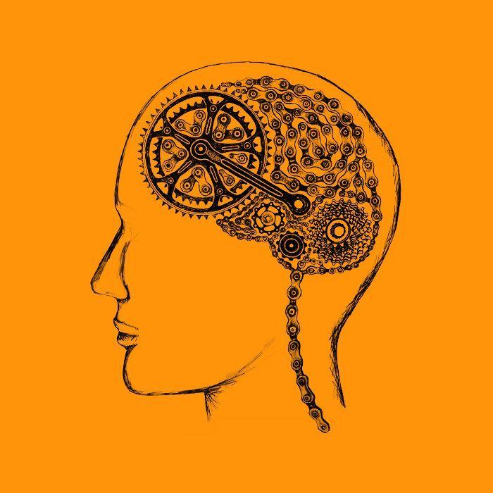 cerebro bicicleta